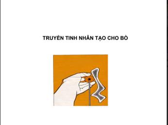 TRUYỀN TINH NHÂN TẠO TRÂU, BÒ