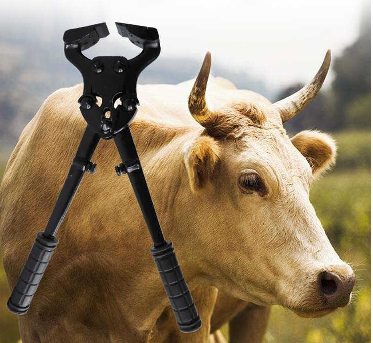 Kìm cắt móng bò