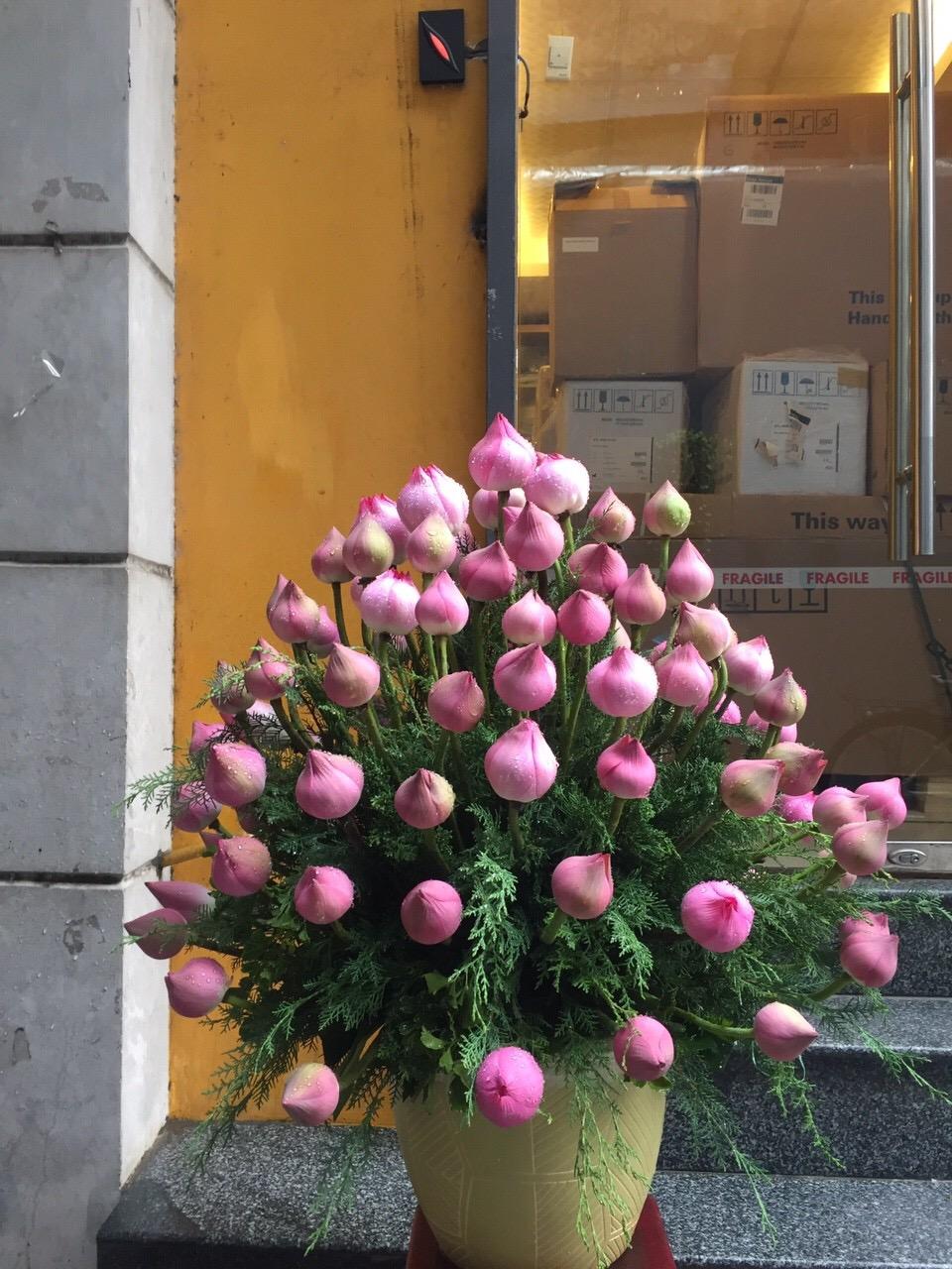 """Giỏ hoa """"Hạt Giống"""" trong sáng"""
