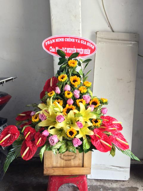 Hoa tươi chúc mừng 019