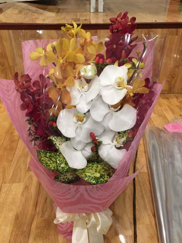 """Bó hoa lan """"Ngây Thơ Trong Sáng"""""""