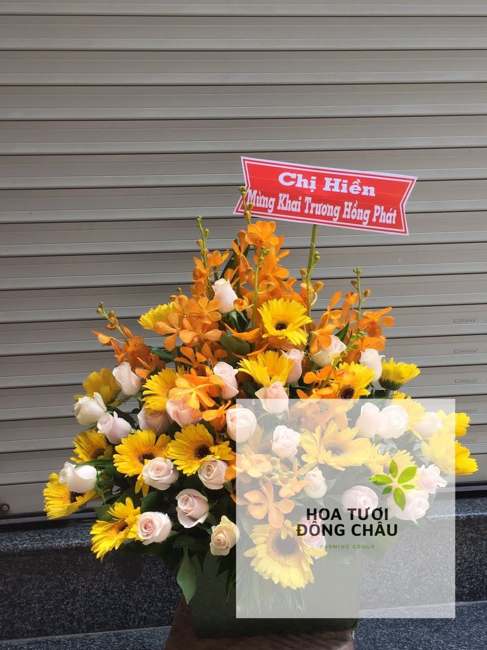 hộp hoa tươi nắng ban mai