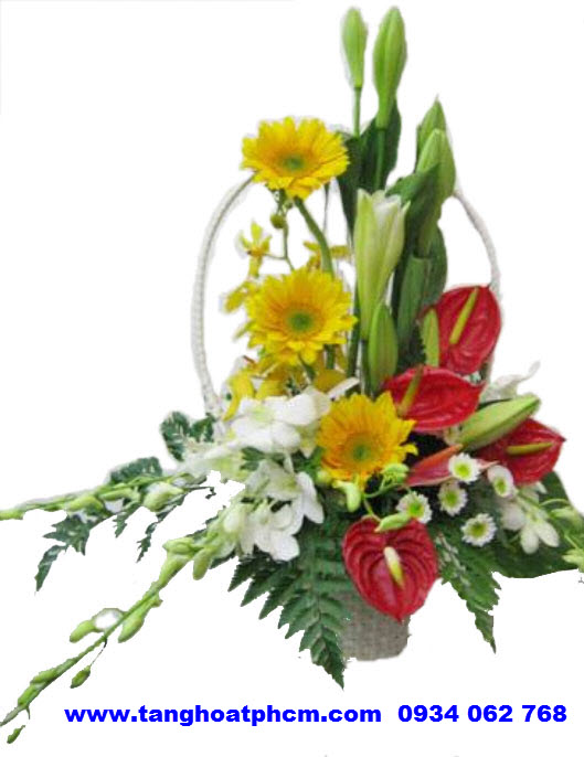 """Giỏ hoa tươi """"Vững Chắc"""""""