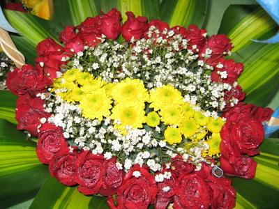 """Quà 20 tháng 11 """"Bó Hoa Hồng Đỏ"""""""