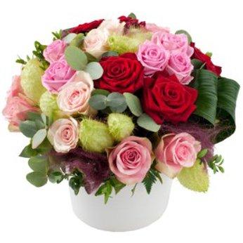 Romantic Roses Belgium