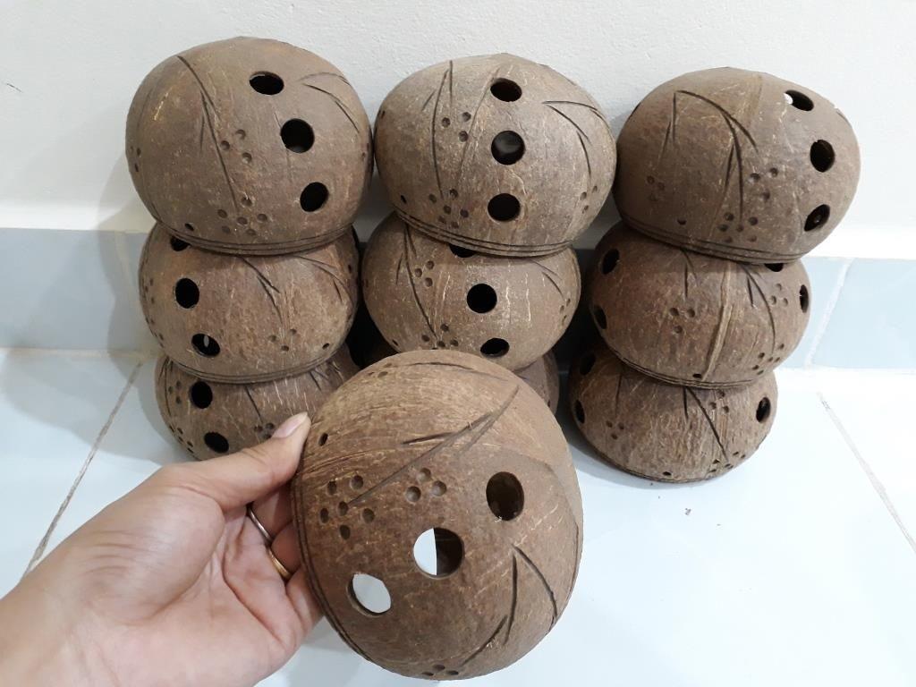 Chậu gáo dừa trồng lan - Mỹ Nghệ Nam Trang
