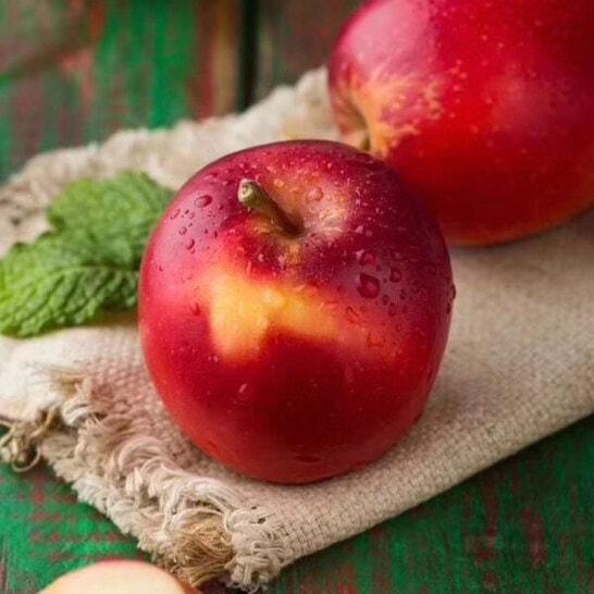 Mua táo rockit giá rẻ nhất HCM