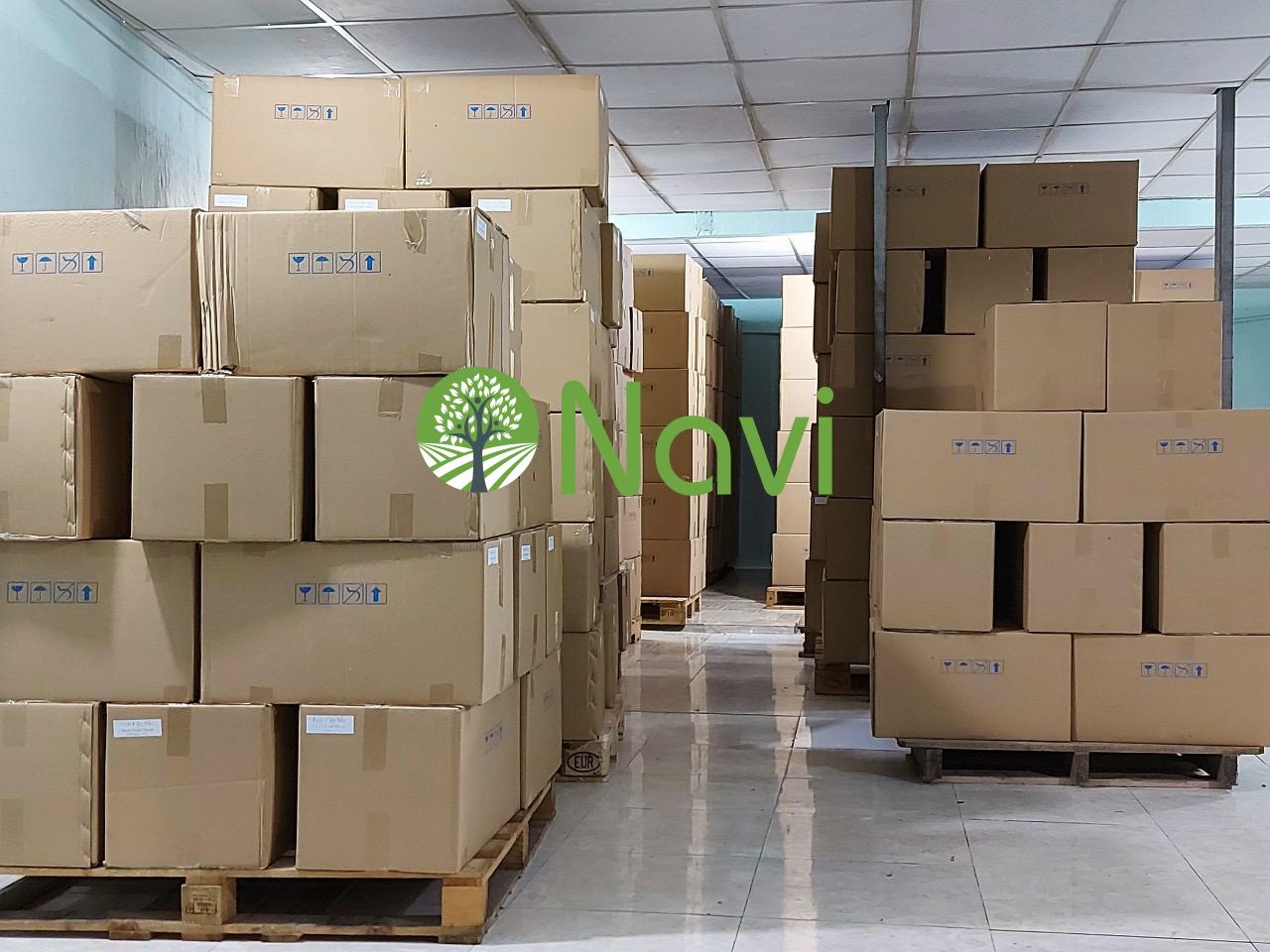 Vietnam soft dried mango for export