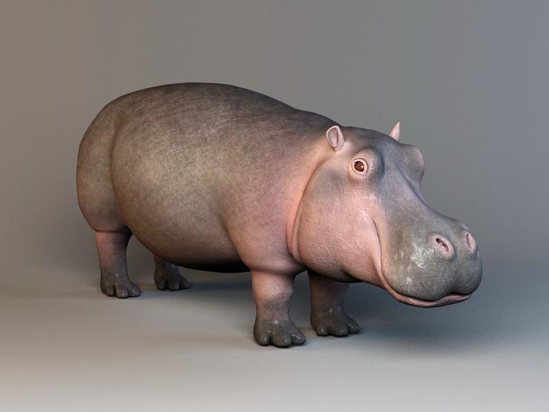 Bàn mô hình ghép trang trí hình Hà Mã(Hippo) dễ thương