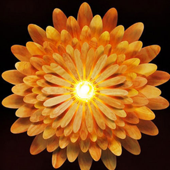 Đèn gỗ trang trí hoa Cúc LS0014