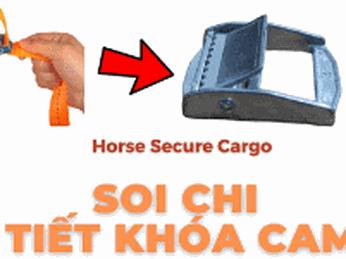 Những lý do mà Horse chọn khóa cam để sản xuất các sản phẩm dây chằng hàng