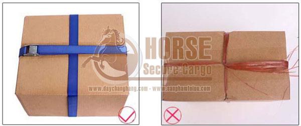 Dây chằng khóa cam bảo vệ hàng bên trong thùng được an toàn