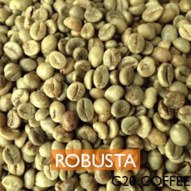 GREEN COFFEE ROBUSTA washed
