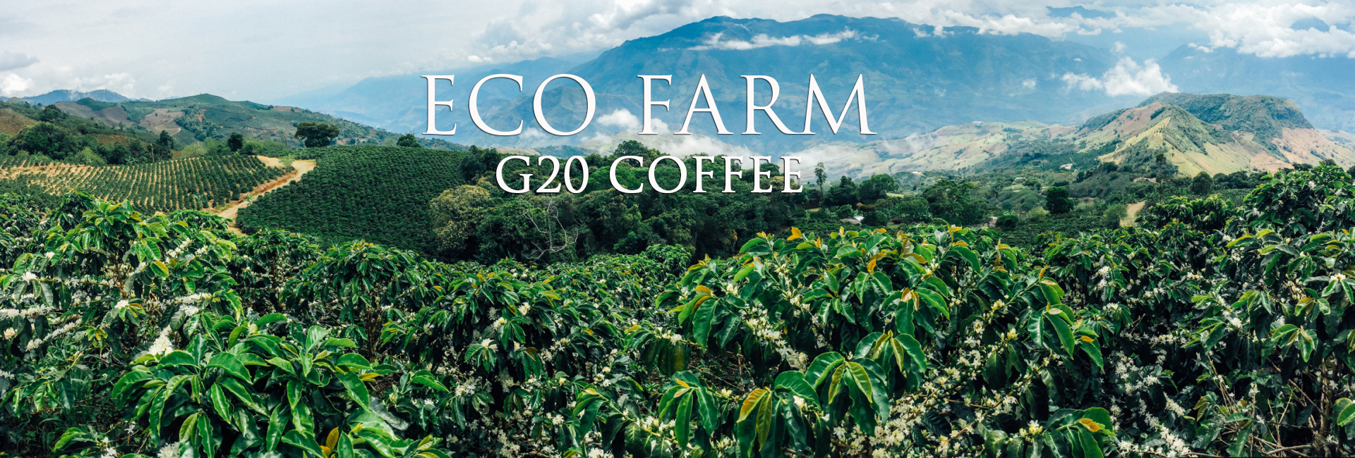 ECO FARM G20 COFFEE