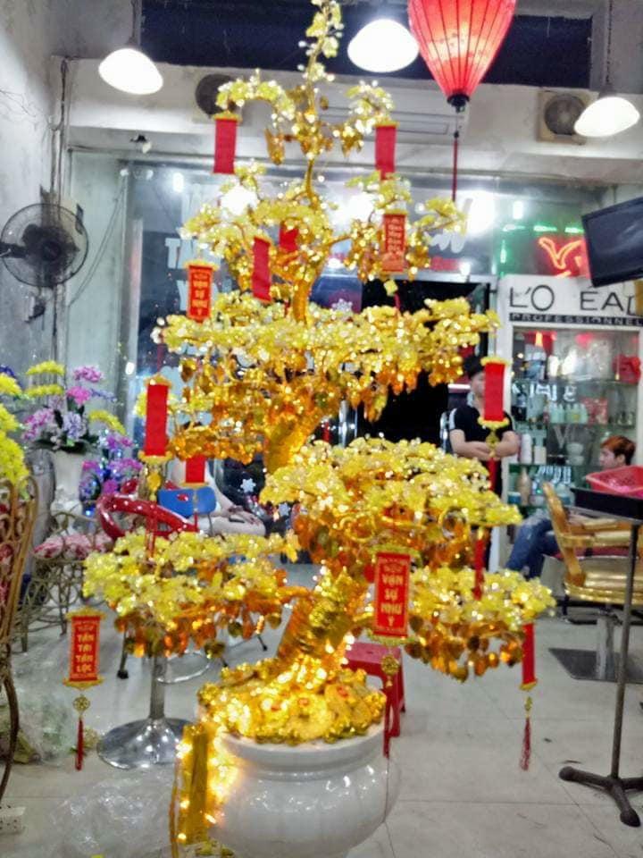 Hoa Pha Lê Mai Vàng/ Nhã Đan Shop