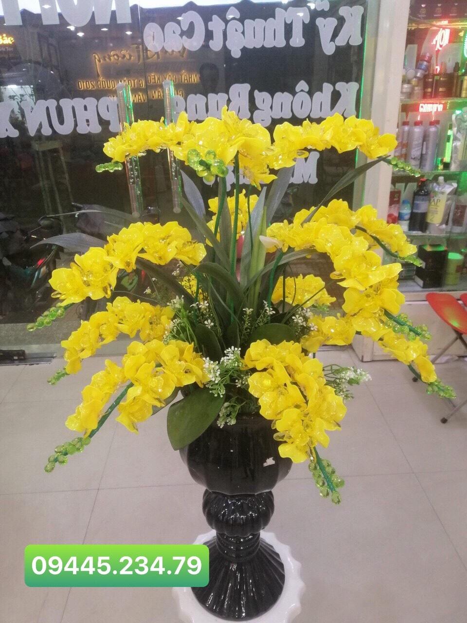 Hoa Lan Hồ Điệp Vàng/Nhã Đan Shop