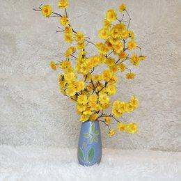 Bình hoa mai nhỏ để bàn