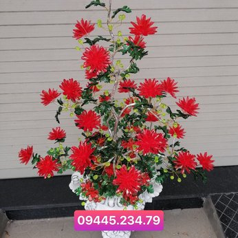 Hoa Pha Lê Cúc Đỏ