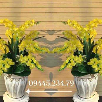 Hoa Pha Lê Phong Lan Vàng