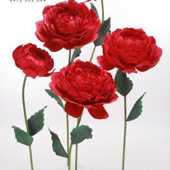 Hoa Mẫu Đơn Đỏ
