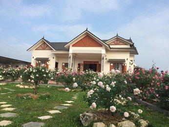 Ngôi nhà hoa hồng từ trong cổ tích bước ra đời thực ở Ba Vì, Hà Nội