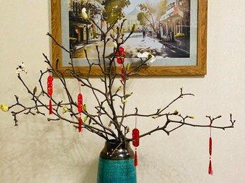 5 loại hoa được ưa chuộng nhất thị trường, hội chị em săn lùng