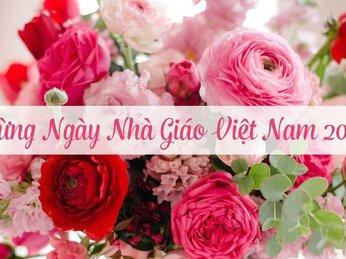 Nguồn gốc và ý nghĩa của Ngày Hiến chương Nhà giáo Việt Nam 20/11