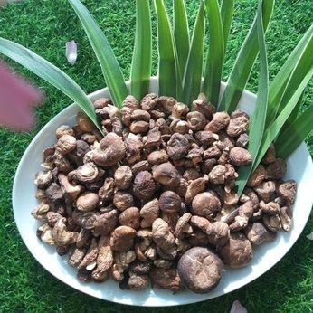 Nấm Hương Cao Bằng- 100 gram