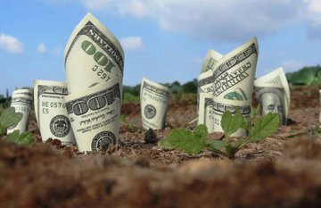 Tài sản gắn liền với đất: 3 vấn đề mà người sử dụng phải đặc biệt lưu tâm