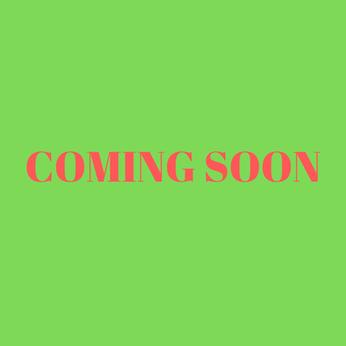 NHIỆT ẨM KẾ ĐIỆN TỬ PMRH120