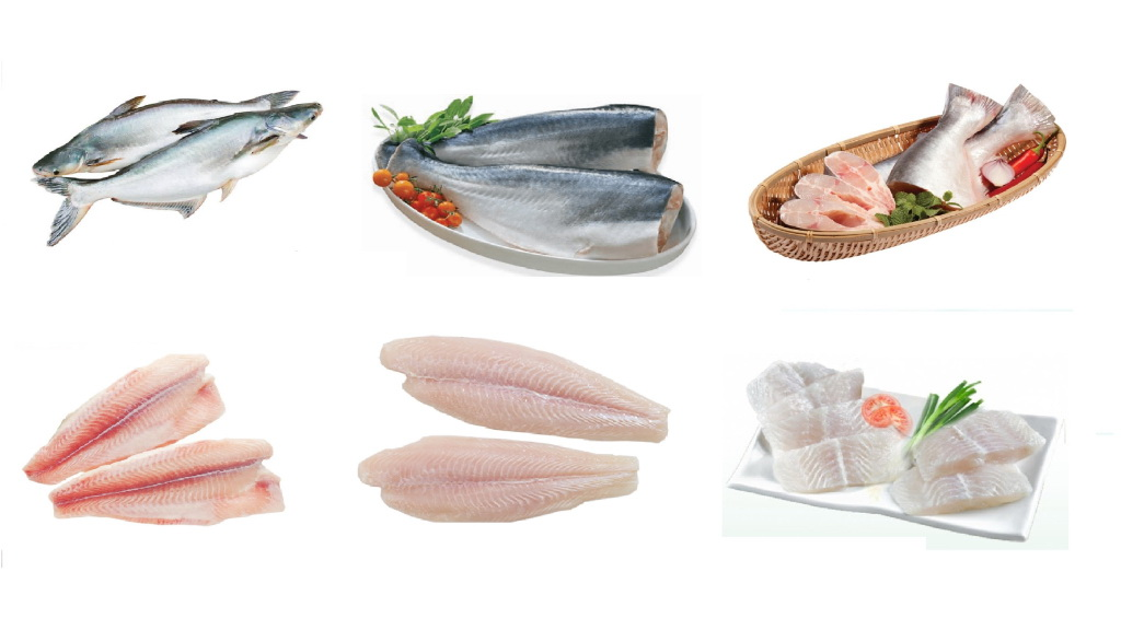 Forever-Green-Food-Pangasius-Product