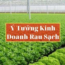 【Ý tưởng khởi nghiệp trồng rau sạch】☑️Ý tưởng khởi nghiệp của xu hướng