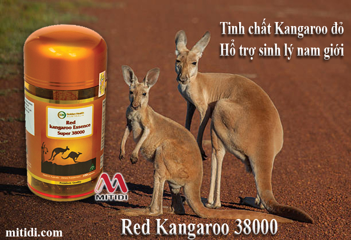 Mitidi-tang-cuong-sinh-ly-nam-gioi-kangaroo-GOLDEN-HEALTH-RED-KANGAROO-ESSENCE-SUPER-38000MG-03.jpg (327 KB)