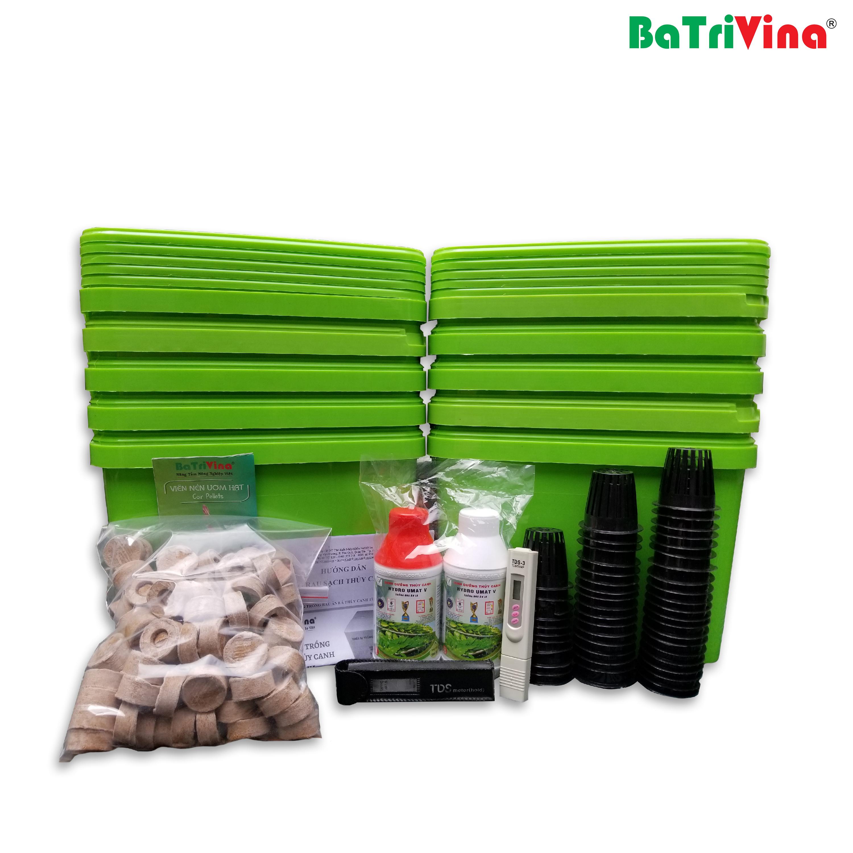Combo 10 thùng trồng rau ăn lá thủy canh tĩnh BaTriVina (Đầy đủ phụ kiện trồng)