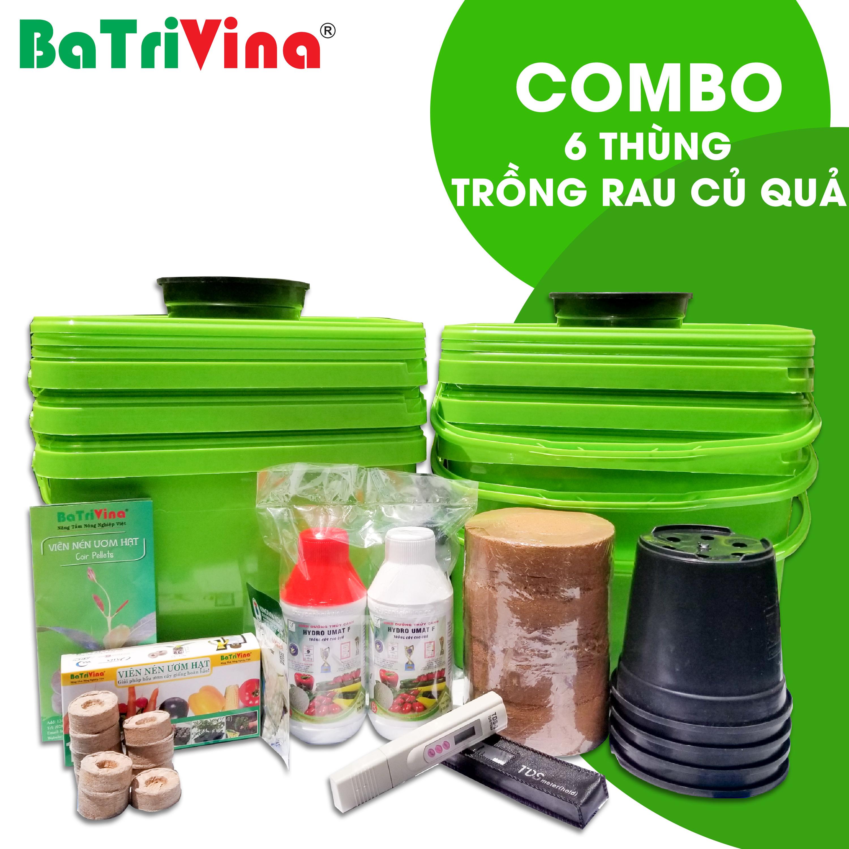 Combo 6 thùng trồng RAU CỦ QUẢ thủy canh tĩnh BaTriVina (Đầy đủ phụ kiện trồng)