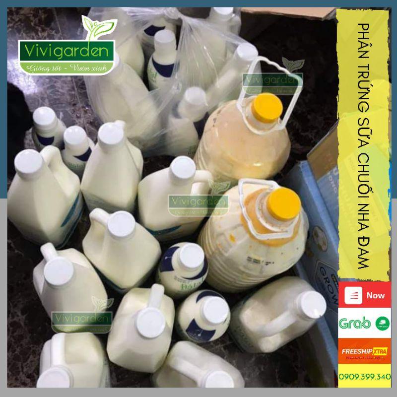 Chai 1 Lít Phân Trứng Sữa, Chuối, Nha Đam - Bón Thúc Giai Đoạn Cây Sinh Trường