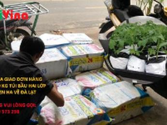 Giao đơn hàng hơn 300 kg túi bầu Nylon trắng đen hai lớp về Đà Lạt trồng Cà chua