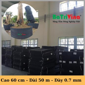 Bầu Nhựa Dưỡng Cây BoSaVina (Cao 60 cm - Cuộn dài 50 m - Dày 0.7)