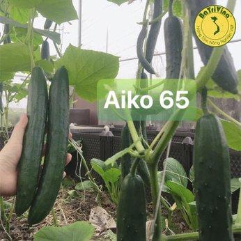 Hạt giống Dưa leo Baby tự thụ phấn AIKO 65 chịu nhiệt tốt - Gói 10 hạt