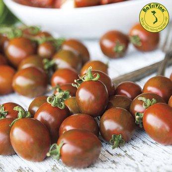 Cà chua trái cây ngọt Cherry Socola - Combo 5 hạt giống