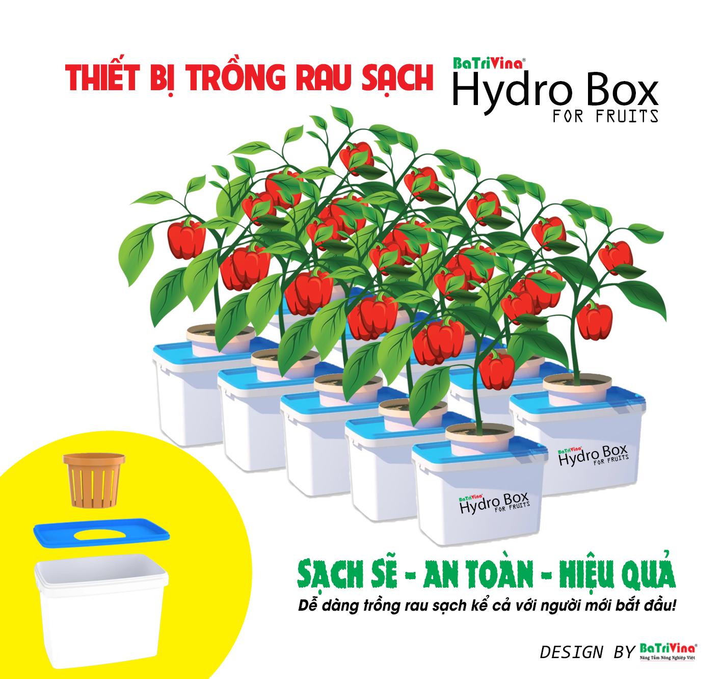 thùng trồng rau củ quả batrivina