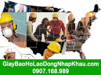Giày bảo hộ lao động nhập khẩu tại tphcm