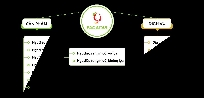 sản phẩm và dịch vụ của PAGACAS