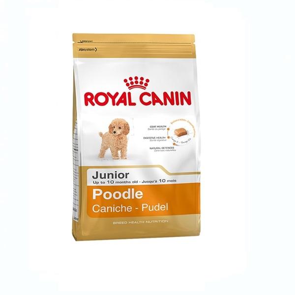 Thức ăn cho chó Poodle dưới 10 tháng tuổi aha