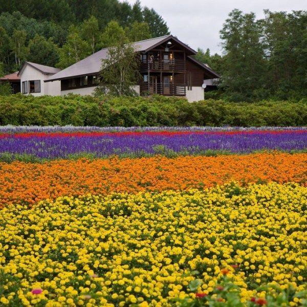 Hokkaido - Noboribetsu - Otaru - Sapporo