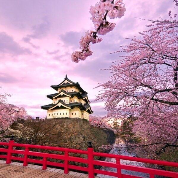 Tokyo - Núi Phú Sĩ - Kyoto - Osaka - Kobe