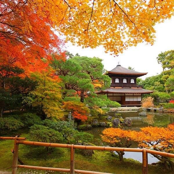 Nagoya - Kyoto - Shirakawago