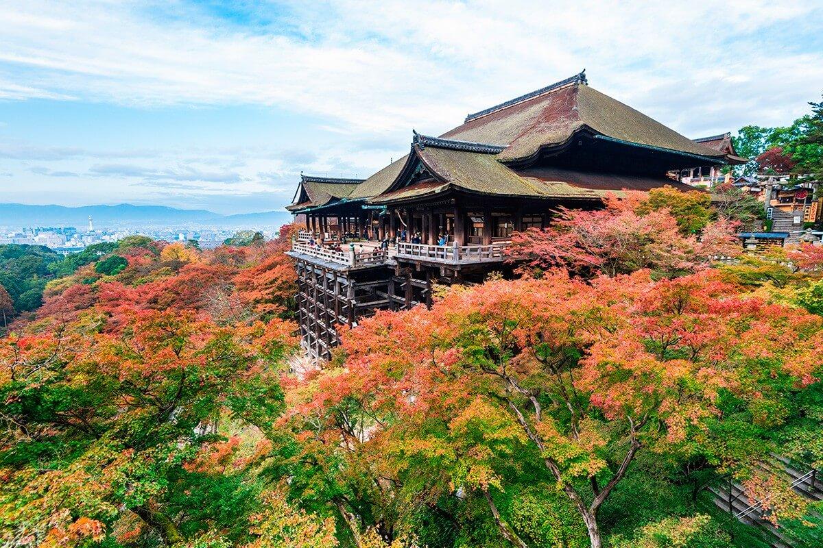 Tokyo - Hakone - Núi Phú Sĩ - Kawaguchiko