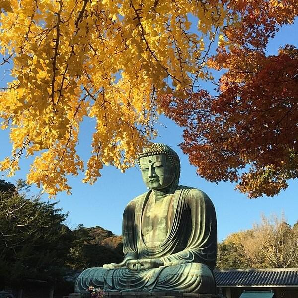 Nagoya - Shirakawa - Takayama - Matsumoto - Ena