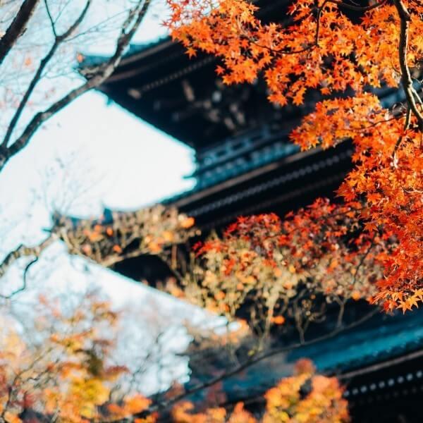 Nagoya - Shirakawago 4N3D